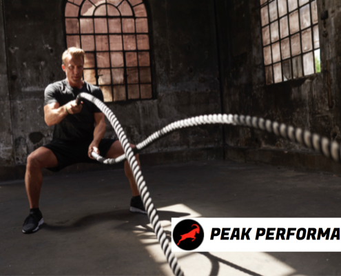 DNA-GYM Peak Performance